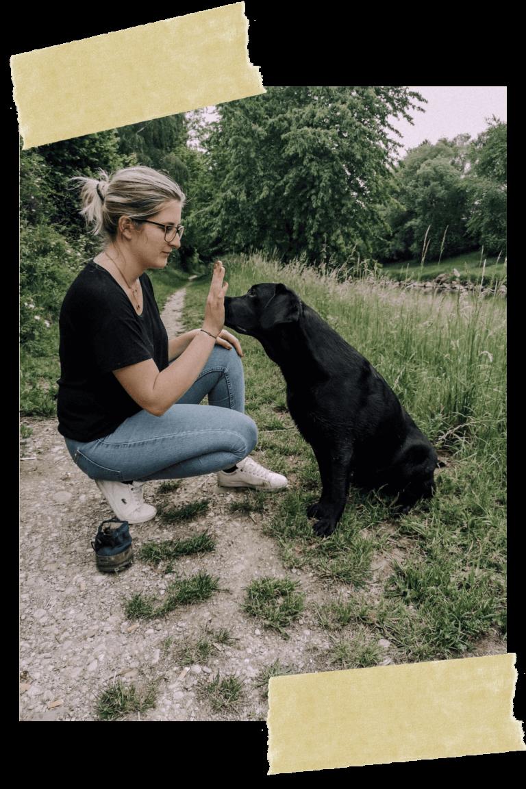 hundetraining-hundeschule-online-linz-weltweit-welpe-vollzeit4beiner-kerstin-quast