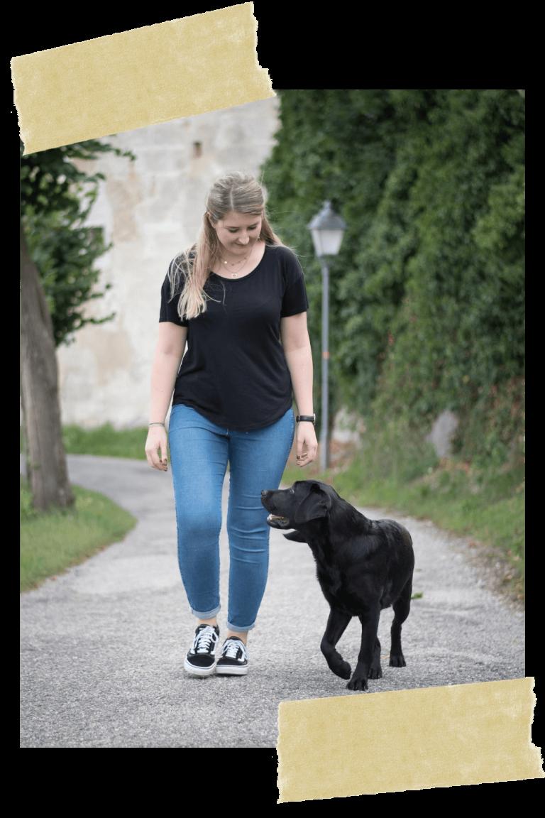 hundetraining-hundeschule-online-oberoesterreich-welpe-vollzeit4beiner-kerstin-quast