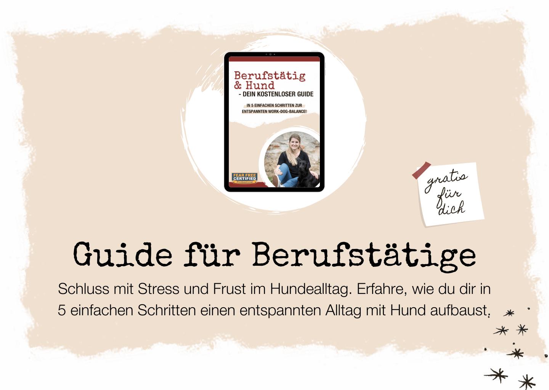 guide-berufstaetig-job-karriere-hund-hunde-gratis-instagram